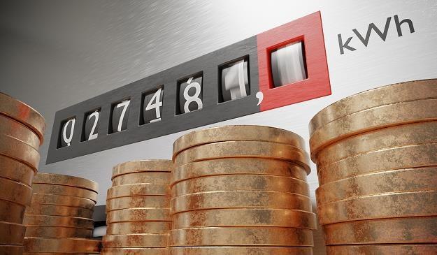 Ceny prądu będą rosły /©123RF/PICSEL