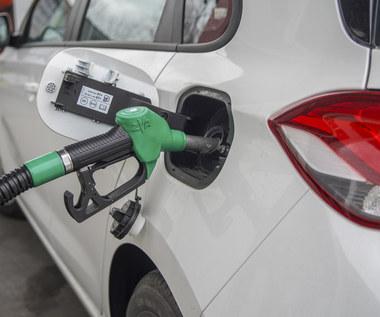 Ceny ropy mogą być ujemne. A paliwo nie będzie tańsze niż 2,5 zł!