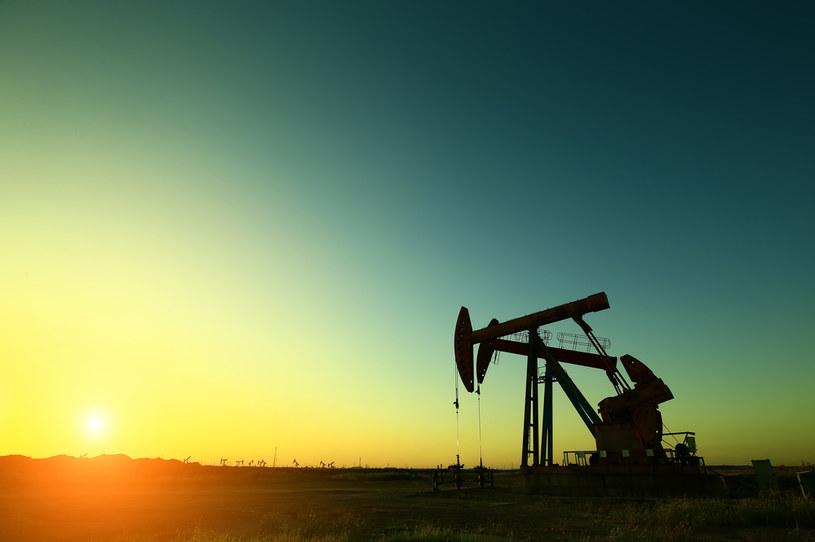 Ceny ropy na amerykańskiej giełdzie paliw nadal spadają /123RF/PICSEL