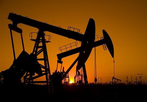 Ceny ropy naftowej ustabilizowały się /© Panthermedia
