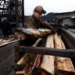 Ceny w górnictwie rosną nadal