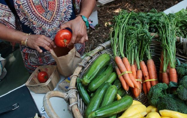 Ceny warzyw i owoców pozostają drogie /PAP/IAR
