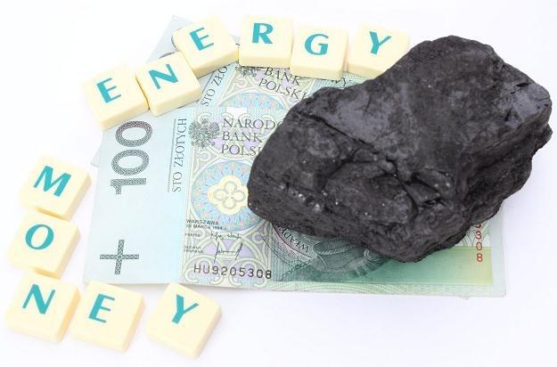 Ceny węgla pójdą do kontroli /©123RF/PICSEL