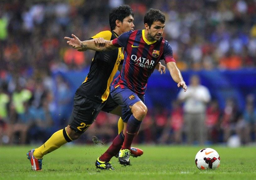 Cesc Fabregas zdobył bramkę i doznał kontuzji /AFP