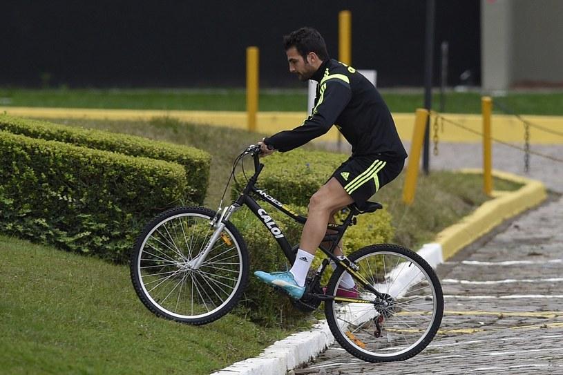 Cesc Fabregas został odesłany z treningu reprezentacji Hiszpanii /AFP