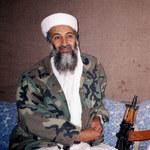 """Championship. Osama bin Laden """"zasiadł"""" na trybunach"""