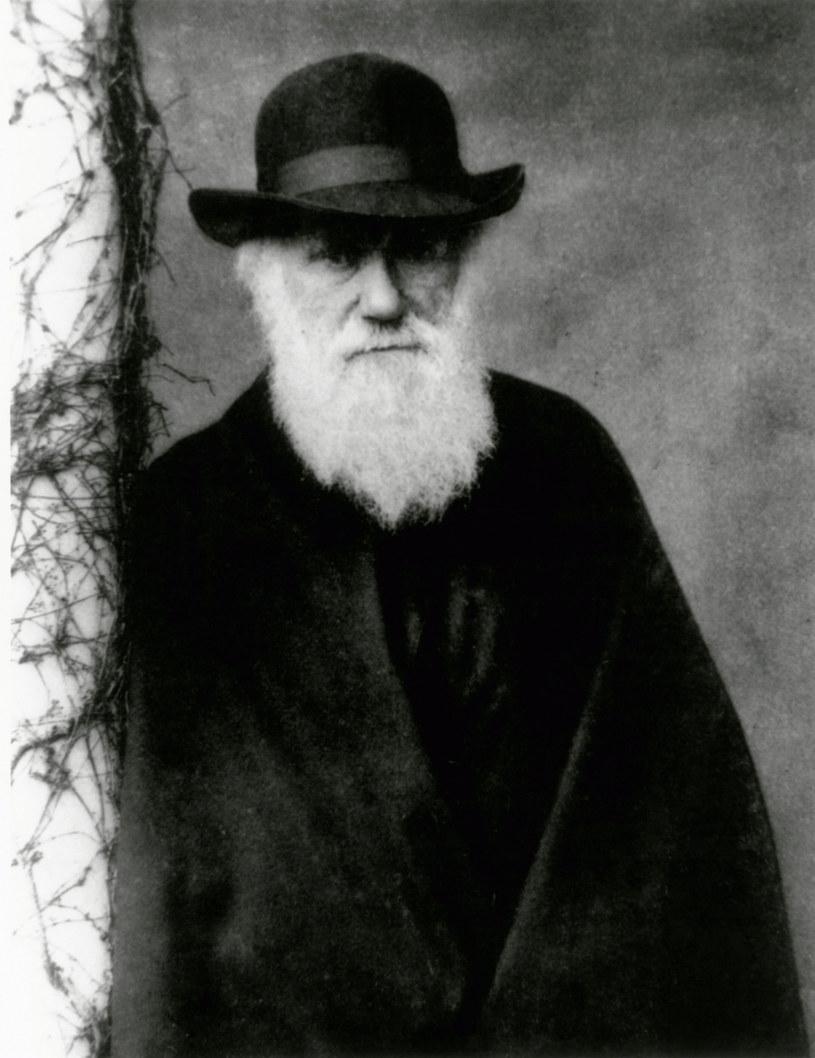 Charles Robert Darwin brytyjski przyrodnik i geolog, twórca teorii ewolucji /East News