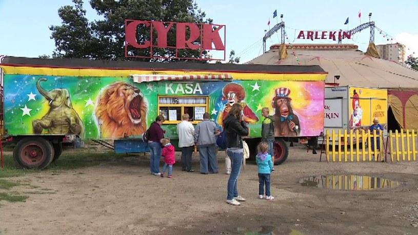 Chcą zakazu wykorzystywania zwierząt w cyrku. Protest w Szczecinie /TVN24/x-news