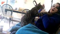 Chciała zjeść w spokoju. Wtedy przyszedł kot...