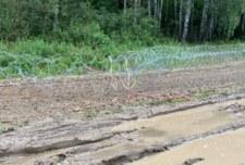 Chcieli usunąć zasieki na granicy z Białorusią. Usłyszą zarzuty