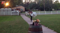 Chcieli wejść na wesele z przytupem. Udało się?