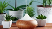 Chemiczne pochłaniacze zapachów i odświeżacze powietrza mogą nam szkodzić