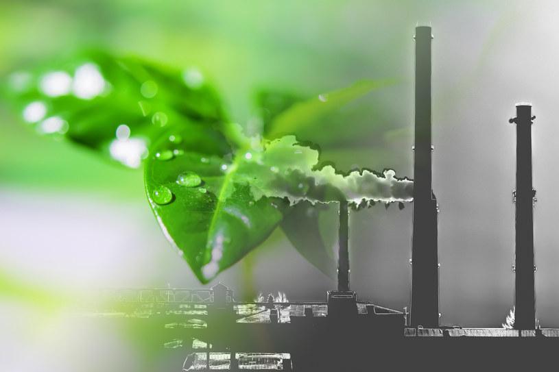 Chętnie zapłacimy za czyste powietrze /123RF/PICSEL