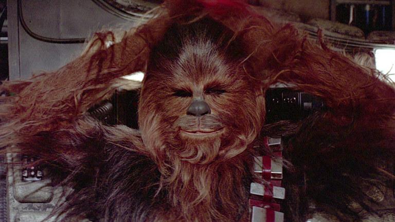 Chewbacca /materiały prasowe