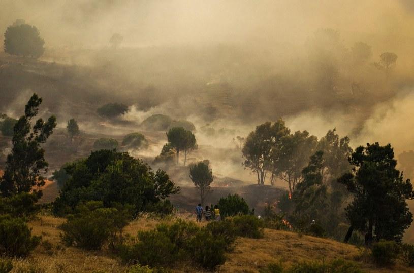 Chile /AFP