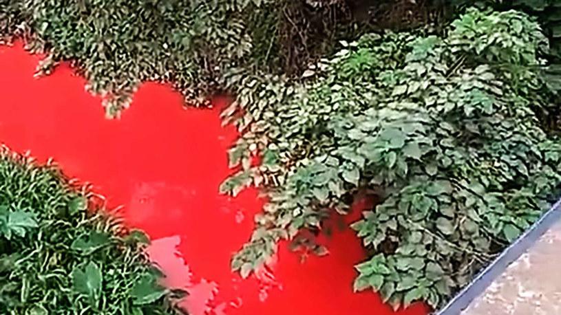 Chińska rzeka zmieniła kolor na czerwony /materiały prasowe