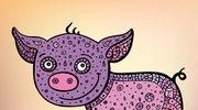 Chiński horoskop 2017 - Świnia