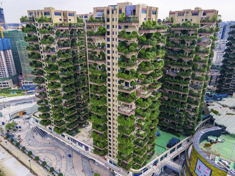 Chińskie osiedle robi wrażenie już z daleka.. /ICHPL Imaginechina /East News