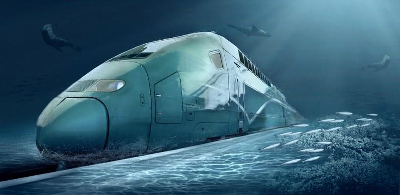 Chiny zbudują podwodny pociąg? Podwodny pociąg - zdjęcie ilustracyjne /123RF/PICSEL