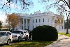 Choinka już w Białym Domu. Pochodzi z Lansdale w Pensylwanii