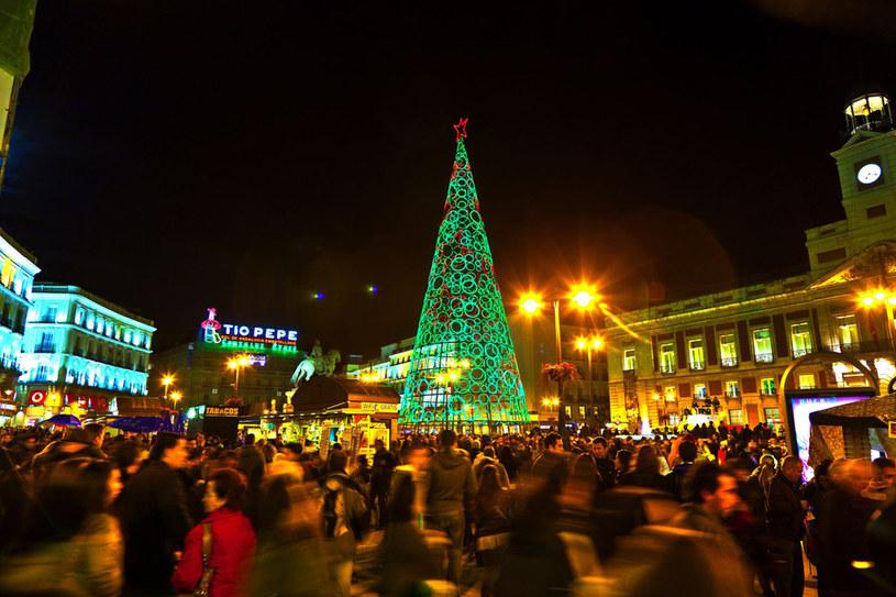 Choinka na placu w Madrycie /123RF/PICSEL