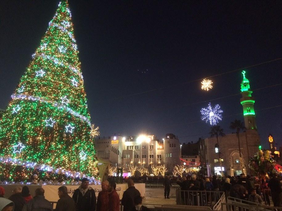 Choinka przed Bazyliką Narodzenia Pańskiego /PiotrBułakowski /RMF FM