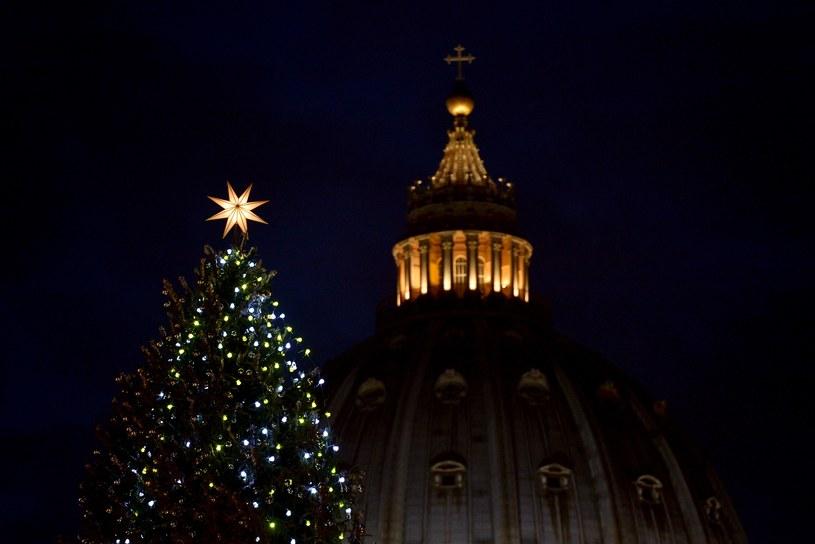 Choinka przed bazyliką Świętego Piotra. /AFP