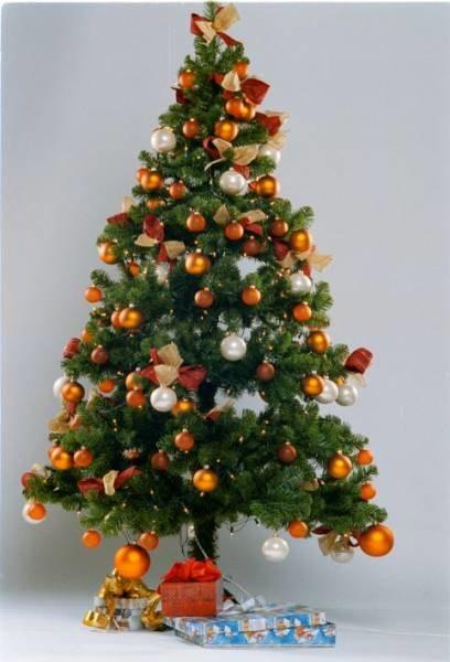 Choinka symbolizuje drzewo życia, fot. Przemek Pokrycki /Agencja SE/East News