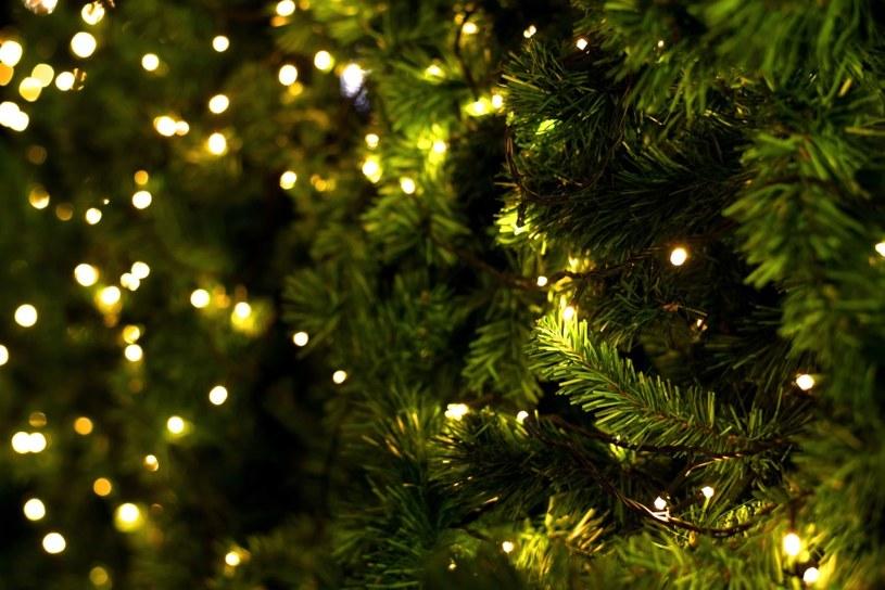 Choinka to atrybut świąt /©123RF/PICSEL