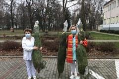 Choinki dla medyków w Puławach