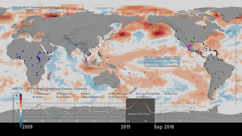 Cholera niestety nie jest pieśnią przeszłości - zwłaszcza w biedniejszych częściach świata. W rozwoju choroby mogą także pomóc zmiany klimatyczne /NASA's Scientific Visualization Studio /East News
