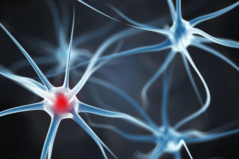 Choroba Alzheimera zaczyna się już u dzieci? /123RF/PICSEL