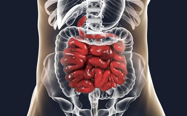 Choroby jelit /©123RF/PICSEL