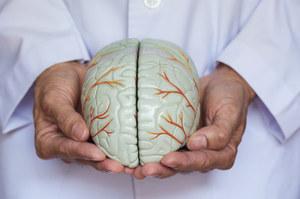 Choroby układu nerwowego