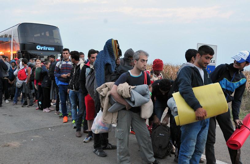 Chorwacja zamknęła swoją granice dla pojazdów z serbską rejestracją, zdj. ilustracyjne /ELVIS BARUKCIC / AFP /AFP
