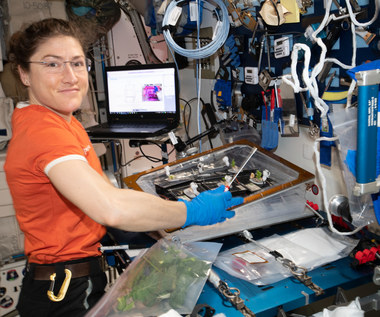 Christina Koch pobije kosmiczny rekord
