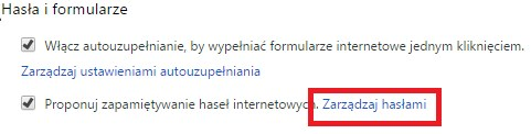 chrome hasla i formularze /INTERIA.PL
