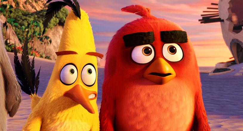"""Chuck i Red - bohaterowie animacji """"Angry Birds Film"""" /materiały prasowe"""