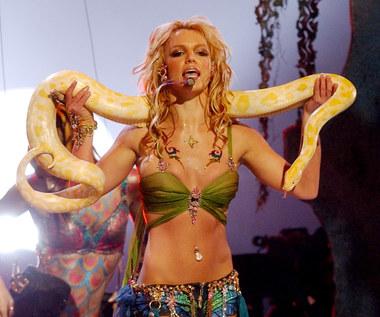 """Ciąg dalszy problemów Britney Spears. """"Mocno się temu sprzeciwia"""""""
