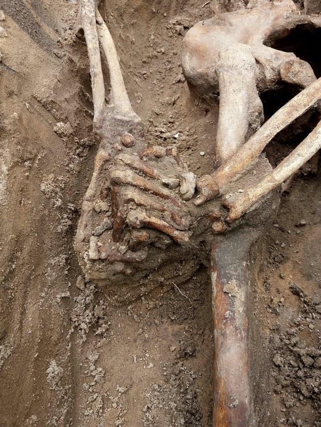 Ciała zamordowanych zostały przez komunistów rzucone do dołu w taki sposób, że ich dłonie się splotły. /Biuro Poszukiwań i Identyfikacji IPN /IPN