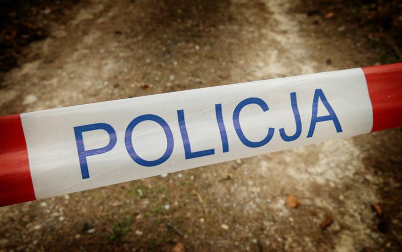 Ciało 23-latki znaleziono w stawie /Damian Klamka /East News