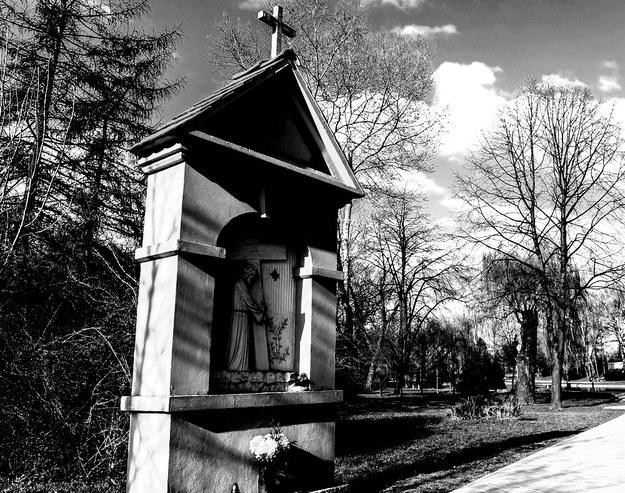 Ciało Marii Tyrankiewicz znaleziono w Parku Staszica w Łodzi /Gerard /Reporter