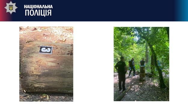 Ciało Szyszoua zostało znalezione rano w parku w Kijowie /NATIONAL POLICE OF UKRAINE HANDOUT /PAP/EPA
