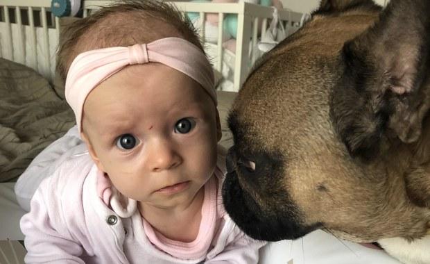 Ciekawa Mama: Niemowlę a alergia na psa lub kota