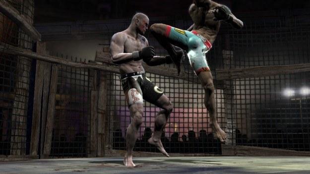 Ciekawey czy gra będzie bardziej zbliżona do kultowego UFC Undisputed czy raczej Tekkena /Informacja prasowa