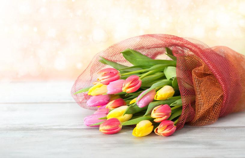 Cięte tulipany mogą zdobić nasz dom przez kilkanaście dni /123RF/PICSEL