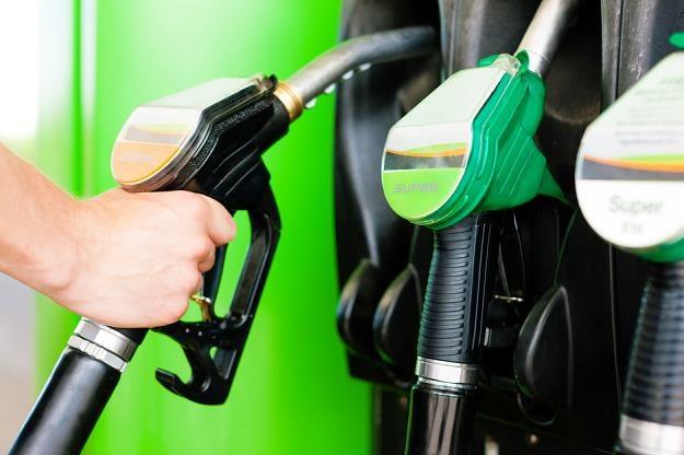 Cios w oszustów z rynku paliwowego był mocny i celny /poboczem.pl