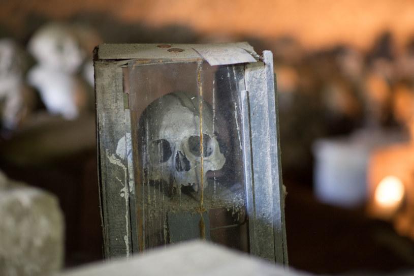 Cmentarz Fontanelle w Neapolu /123RF/PICSEL