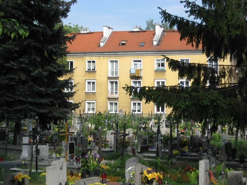 Cmentarz na Osiedlu Wandy, fot. Jacek Boroń/Reporter /East News