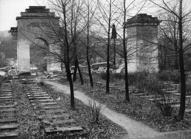 Cmentarz Obrońców Lwowa - Orląt Lwowski po zniszczeniu go przez władze sowieckie w 1971 r. /Danuta B. Łomaczewska /East News